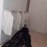 fornecedor de porta banheiro ts laminado estrutural Santa Bárbara d'Oeste
